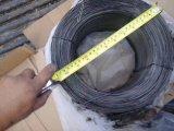 Le noir a recuit le fil d'acier de ressort/fil de relation étroite/fil obligatoire