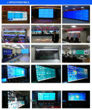 "49 "" Did Panel LCD TV Wall with LCD Screen"
