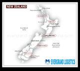 Confiável consolidação do transporte da China para a Nova Zelândia