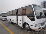 Bus della vettura delle sedi di Kingstar Nettuno S6 25, bus del passeggero (diesel)