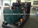 generatore del biogas del generatore del gas naturale di 100kVA 80kw Cummins
