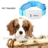 Fashinable Pets o perseguidor do GPS com tempo real Tk909 de seguimento do mapa de Google