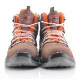 Zapatos de seguridad libres elegantes del metal con el casquillo de acero M-8366 de la punta