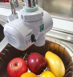 Hahn-Ozon-Generator-Wasser-Reinigungsapparat (SW-1000)