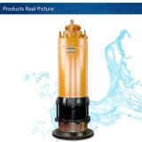 최신 판매 Wqn 하수 오물 잠수할 수 있는 전기 수도 펌프는을%s 가진 절단 시스템을 가위로 자른다