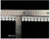 폴리에스테 자수 레이스 손질 또는 꿰매는 레이스 손질 또는 공상 자수 레이스 손질 L182