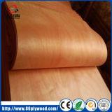corte rotatorio de la chapa de madera de la cara de 0.3m m Okoume un grado