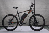 Popular 26 '' 250W Mountain Ebike Electric Bicycle 36V