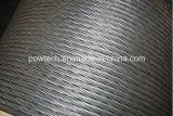 Kerl-Strang-Draht-Aluminiumstahlleiter