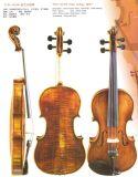 バイオリンの旧式なモデル(OL196)