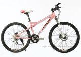 """Алюминиевая рама MTB 24sp 26"""" женщин на горных велосипедах (FP-MTB-A077)"""