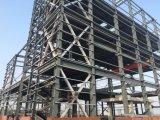Edificio de oficinas de la estructura de acero de los Multi-Suelos (ZY139)