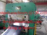 Macchina di formatura di trattamento idraulica di gomma della pressa
