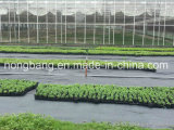 2017 Nouveau tapis tissés PE pour l'Agriculture Jardin de mauvaises herbes