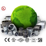 Raccords de tuyaux de fer malléable avec une haute qualité