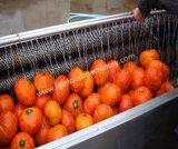 Patata/carota/ravanelli/pulizia di lavaggio manioca/della cipolla e sbucciatrice