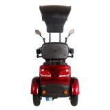2016 un motorino elettrico delle tre rotelle per gli handicappati