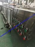 Производственная линия шлиха томатов Rated емкости свежая & затира томата