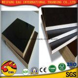 Noir/brun film imperméable de coffrage de béton face///contre-plaqué pour la construction