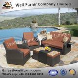 Gruppo profondo buono della disposizione dei posti a sedere di Furnir Wf-17091 4PC