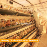 Тип автоматическая клетка птицефермы для слоя/цыпленок курицы/яичка