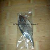 Los mariscos congelados automáticos, pescado fluyen empaquetadora