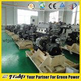 Motore a gas di NG per il generatore, l'automobile o la pompa ecc
