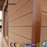 Los paneles hermosos de la pared de la calidad (TF-04N)