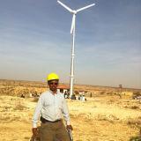 수평한 Axis 20kw Wind Turbine System Maglev Generator