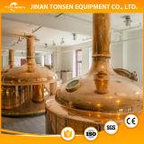 strumentazione di preparazione della birra 100L, strumentazione di fermentazione della casa