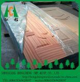Porte en bois Skinn de placage de modèle neuf