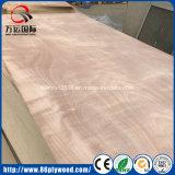 Faisceau commercial de peuplier de contre-plaqué de qualité supérieur pour des meubles