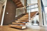 Escalera de la viga de centro con la pisada de escalera y el pasamano de madera del vidrio