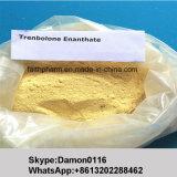Ciclo steroide di Trenbolone Enanthate dell'iniezione grezza della polvere per perdita di peso