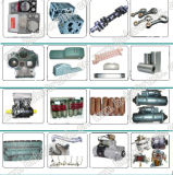 Sinotruk HOWOのトラックのエンジン部分のエアー・フィルタの要素(WG9719190001-1)