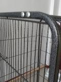 Flache Oberseite-Dach-Metallgroßer Vogel-Rahmen, Papageien-Rahmen