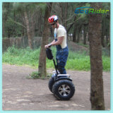Road Two Wheels Electric Chariot Scooter Electric Dirt Bike 떨어져 4000W 72V