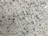 De marmeren Plak van Ader 171004/Kwarts voor Keuken/Badkamers/Muur/Vloer