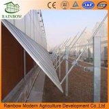 Sistema di ventilazione laterale per la serra commerciale