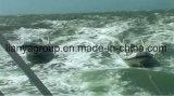 Liya Außenbordrippen-Fiberglas-Boot des motor-660