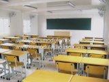 Camera del contenitore dell'aula da vendere