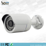 Factory Outdoor HD Wired/WiFi IP Camera clouded