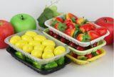 使い捨て可能なペット生鮮食品の皿の野菜のフルーツの肉によってフリーズされる包まれたスーパーマーケット