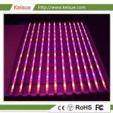 LED Keisue Eficiência elevada crescer luminária de luz