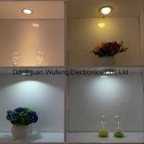Une plus petite lumière de décor de lumière de Module de l'épaisseur DEL pour la cuisine