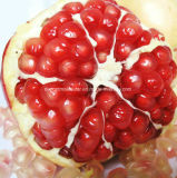 Granatapfel-Schalen-Auszug-Puder, Polyphenol 40%, UV