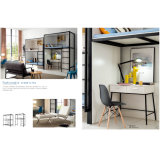 Amerikanische Schule-Ausgangsmöbel-Schlafzimmer-Metallkoje-Betten
