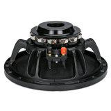10 Zoll-Neodym-Magnet-Beruf-Lautsprecher
