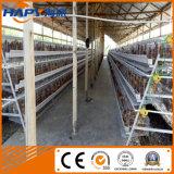 H et un type matériel de cage de poulet pour la ferme avicole