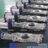 Ferro/Aço Wcb/Lcb/F8/CF8m por meio de ir válvula gaveta da faca
